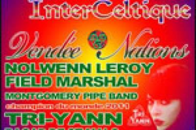 20120406 022145 5479 pass festival celtique
