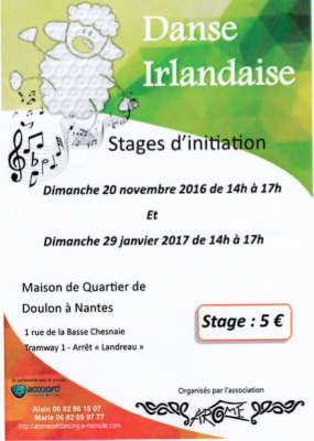 Stage d'initiation au set dancing - 2017